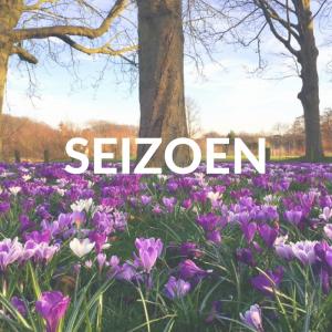 Seizoen